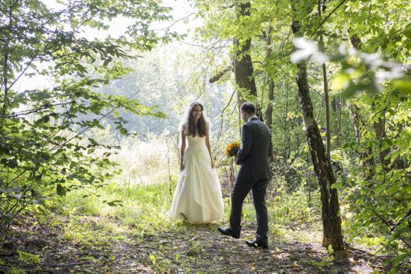 plener, ślubny, sesja, fotografia